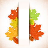 Abstract autumn background with white strip for te Royalty Free Stock Image