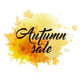 Autumn sale banner. Abstract autumn background with yellow sunflowers and falling maple leaves. `Autumn sale` lettering and yellow watercolor blots Stock Images