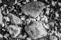 Abstract autumn black and white stones royalty free stock photo