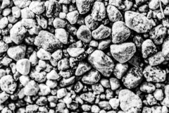 Abstract autumn black and white stones stock images