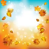 Abstract autumn blur background. Vector. Illustration with copy space for text Stock Photos