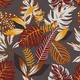 Abstract autumn color leaves seamless grey background. Painted tropical exotic leaves abstract autumn colors in a cartoon style. Seamless vector wallpaper Royalty Free Illustration