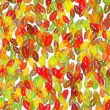 Abstract autumn colorful foliage background. With chaotic leaves of green, yellow, orange and red bright colors Royalty Free Illustration