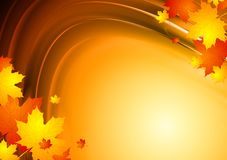 Abstract autumn design with maple leaves. Orange autumn backdrop. Vector illustration eps 10 royalty free illustration