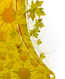 Abstract autumn floral background Royalty Free Stock Image