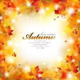 Abstract Autumn Frame with Colorful Leaves. Sparkling stars and defocused light on a blurred background royalty free illustration