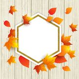 Abstract autumn frame with leaves. Autumn vector wooden background with orange maple leaves. Abstract golden frame for seasonal fall sale vector illustration