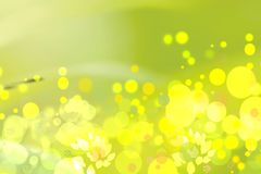 Abstract autumn gradient yellow green bright background texture. With leaves and bokeh circles. Space vector illustration
