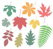 Abstract Autumn. Icon. Vector illustration EPS Royalty Free Stock Photo