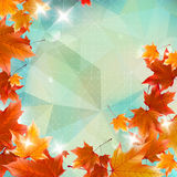 Abstract autumn illustration with maple Leaves. Royalty Free Stock Image