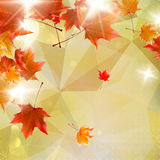 Abstract autumn illustration with maple Leaves. Royalty Free Stock Photos