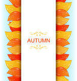 Abstract Autumn Invitation Stock Afbeelding
