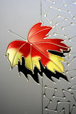 Abstract autumn leaf Stock Image