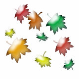 Abstract autumn leaves. Colorful abstract  blowing autumn leaves on white Royalty Free Stock Photo