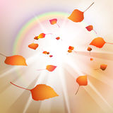 Abstract autumn leaves Royalty Free Stock Photo