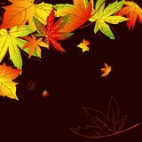 Abstract autumn leaves background Stock Images