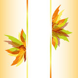 Abstract autumn leaves background. Abstract colorful autumn maple leaves background Royalty Free Illustration