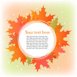 Abstract autumn leaves background eps10 Royalty Free Stock Image