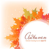 Abstract autumn leaves background eps10. Abstract background with autumn maple leaves eps10 stock illustration