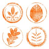 Abstract  autumn leaves. Hand drawn vector stamp Stock Photo
