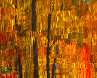 Abstract Autumn Leaves Reflection Royalty Free Stock Images