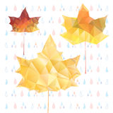 Abstract autumn maple leaves Stock Images