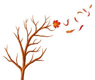 Abstract  autumn tree. Royalty Free Stock Images