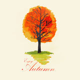 Abstract autumn tree. Illustration of abstract autumn tree Royalty Free Stock Photos