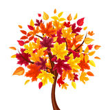 Abstract autumn tree. Vector illustration. Vector abstract autumn tree isolated on a white background Stock Photo