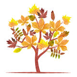 Abstract autumn tree with watercolor maple, oak, chestnut leaves. Vector fall illustration Stock Photography