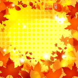 Abstract autumn vector background vector illustration. Abstract hot autumn vector background vector illustration with different leaves and spots template good Stock Photography