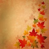 Abstract autumn vintage background Stock Images