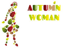 Abstract autumn woman illustration with autumn colors - minimalistic designed background with a tree and leaves, vector stock. Abstract autumn woman Stock Photography