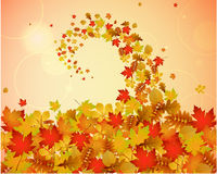 Abstract autumnal backgroun. Abstract autumnal swirly background with colorful leaves Royalty Free Stock Photography