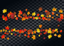 Abstract autumnal background with flying maple leaves. Fall . Abstract autumnal background with flying maple leaves. Fall season greeting card, poster, flyer Stock Image