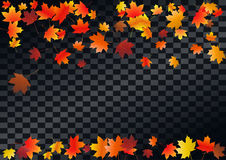 Abstract autumnal background with flying maple leaves. Fall . Abstract autumnal background with flying maple leaves. Fall season greeting card, poster, flyer stock illustration