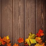 Abstract autumnal backgrounds. Fall maple leaves. Over vintage wooden desk stock photography