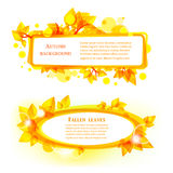 Abstract autumnal leaves frames. With place for text Royalty Free Stock Image