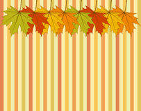 Abstract Autumnal Wallpaper Stock Image