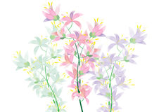 Abstract Azalea flowers on white background for background. Or object vector illustration