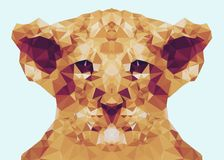 Abstract Baby lion low poly wallpaper Royalty Free Stock Image
