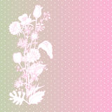 Abstract backdrop design. With field flowers and place for your text Stock Image