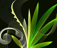 Abstract background. A line-graph design of growing plants Stock Images