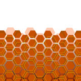 Abstract background. From hexagons for the designer Royalty Free Stock Photography