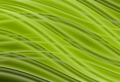 Abstract background. Abstract background green color of the lines Royalty Free Stock Images