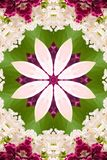 Abstract background. Kaleidoscope of flowers on a white background vector illustration