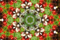 Abstract background. Kaleidoscope of flowers on a green background stock illustration