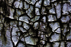 Abstract background. An abstract cracked dark background Royalty Free Stock Photo