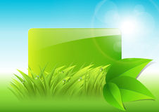 Abstract background. With green grass and leaves Stock Photo