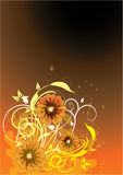 Abstract background. Orange flowers and grunge design Royalty Free Stock Image